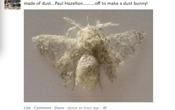 GG Paul Hazelton Dust Sculpt 561x352